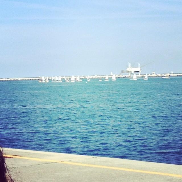 Scuola di vela #igersra #mare #giriingiro