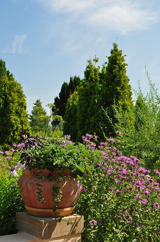 Romantic Gardens (2)