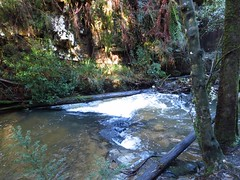 2014-08-10 Lilydale Falls 070 - Second River