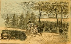 """Image from page 27 of """"Rides and rambles on Staten island"""" (1889)"""