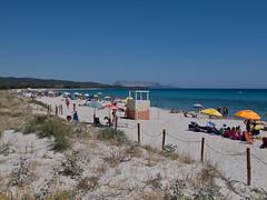 Sardegna, 2014