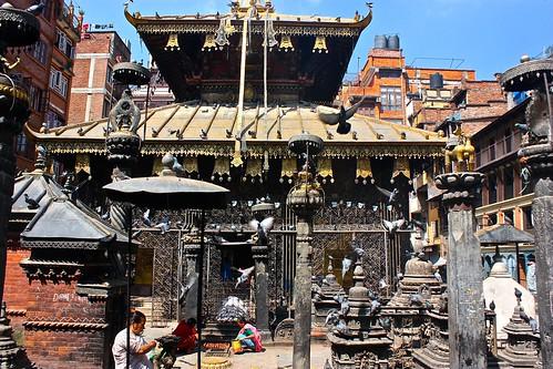 as I said... many birds enjoy Kathmandu's detailed architecture