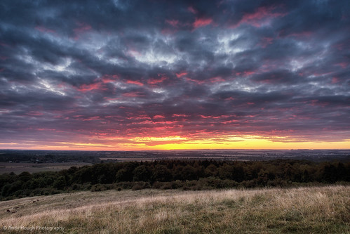 morning trees england color colour clouds sunrise landscape dawn unitedkingdom sony fields a77 southoxfordshire littlewittenham sonyalpha andyhough slta77 andyhoughphotography