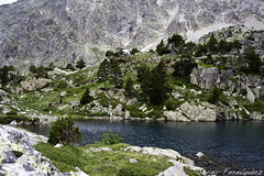 Lago Arriel