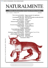 39-1999febb Scuola e storia del Novecento.pdf