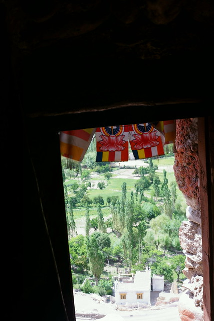 Saspol caves. Ladakh, 07 Aug 2014. 293