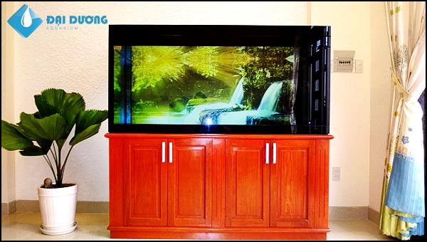 Hồ cá rồng A Khanh Quận 2