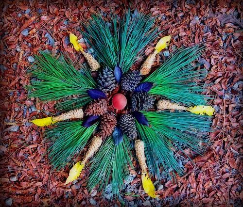 Pine Switch Mandala