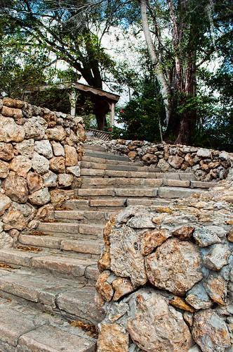 statepark trees rocks florida stones steps gazebo walkway curve ravinegardensstatepark nikond5000
