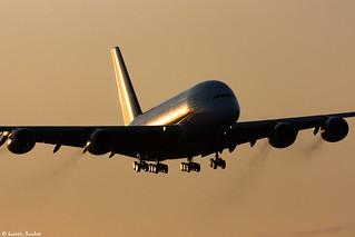 Singapore Airlines au soleil levant