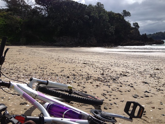 Mountain bike | Waiheke Island