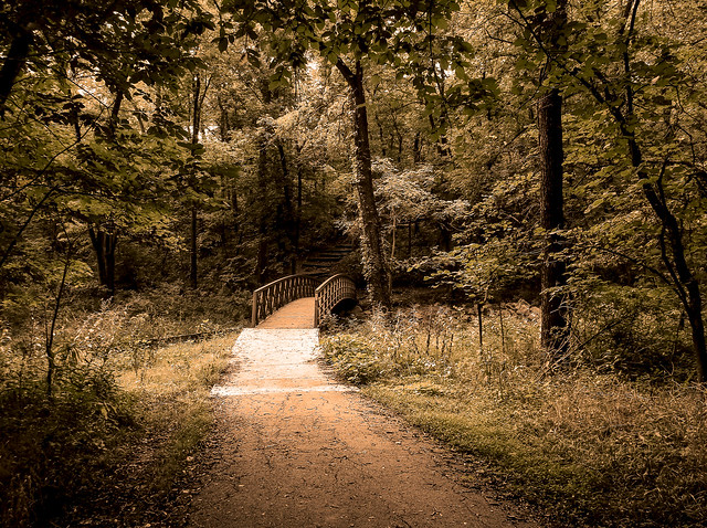 Path from Flickr via Wylio