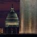 Capitol Zoom