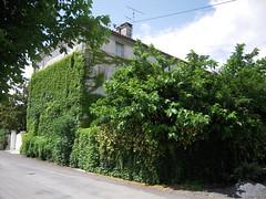 RETOUR A LA NATURE - Photo of Étriac