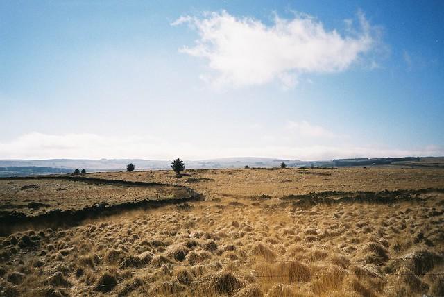 Bellever Tor - Dartmoor