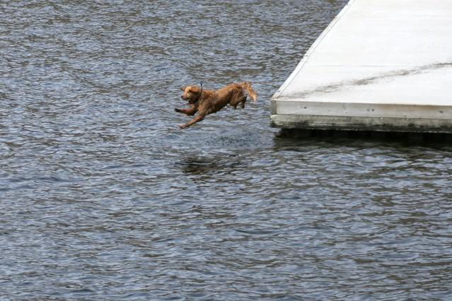 viamede-resort-Toby-Jumping