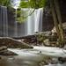 Cucumber Falls by Jaime Dillen-Seibel
