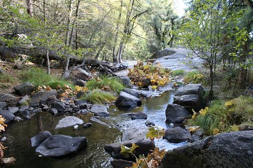 california autumn trees fall water rock creek landscape hiking sierra nationalforest simplysuperb