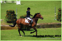 Jumping_Deinze_27-07-2014-177