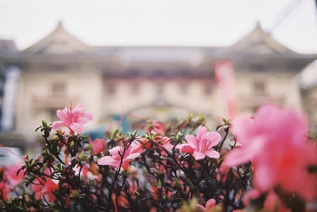 歌舞伎座21年6月_ca004.jpg