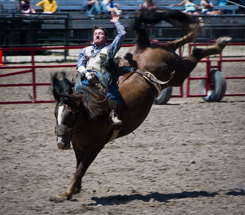 Cheyenne Frontier Days Rodeo 2014-8