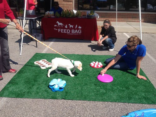 Paws and Claws Pet Event at North Shore Bankin Mequon, WI