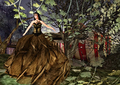 Paris METRO Couture: Artist Series -  Bianca Xavorin Gown