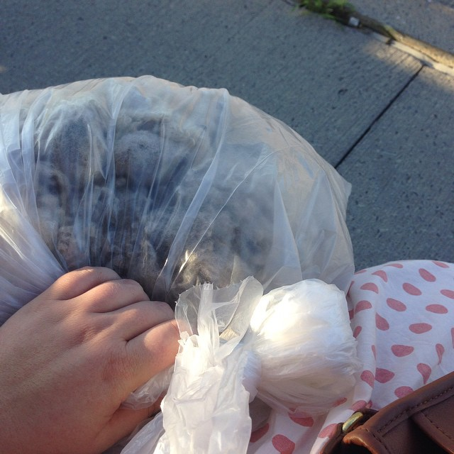 Bag 'o' sheep, memories from Twist 2014. #weekendinthecountry #fibredweeb