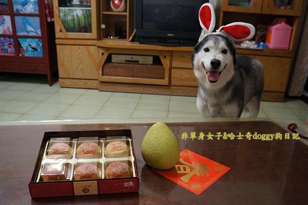 玉兔月餅柚子01
