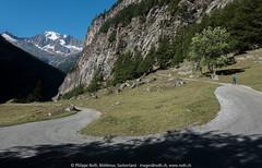 Corwetsch, Alpjerung, Schwarzi Balma, Alpje, Egga
