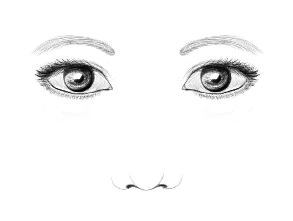 face shading diagram