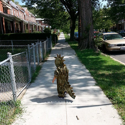 Watch out, DC! There's a dinosaur on the loose. #365photoproject #day359