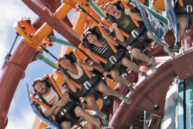 Up Close With Falcon S Fury As Busch Gardens Tampa Brings