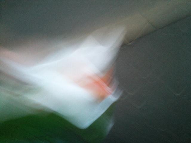PIC_5961