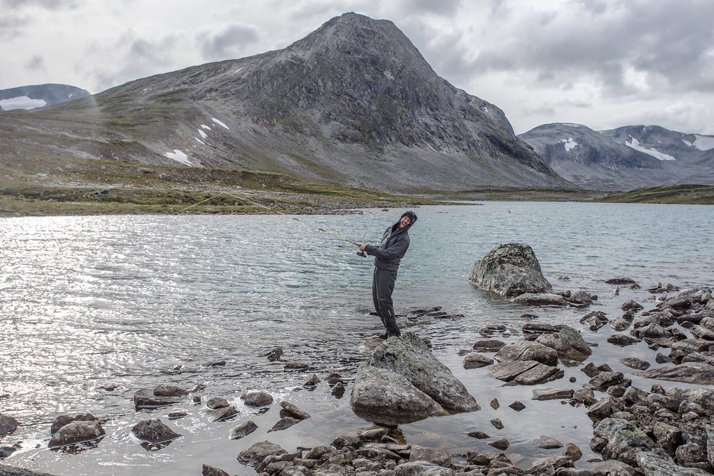 Who needs the fish? Nodre Botvatnet. Tafjordfjellene. Reinheimen National Park. Oppland. Norway.
