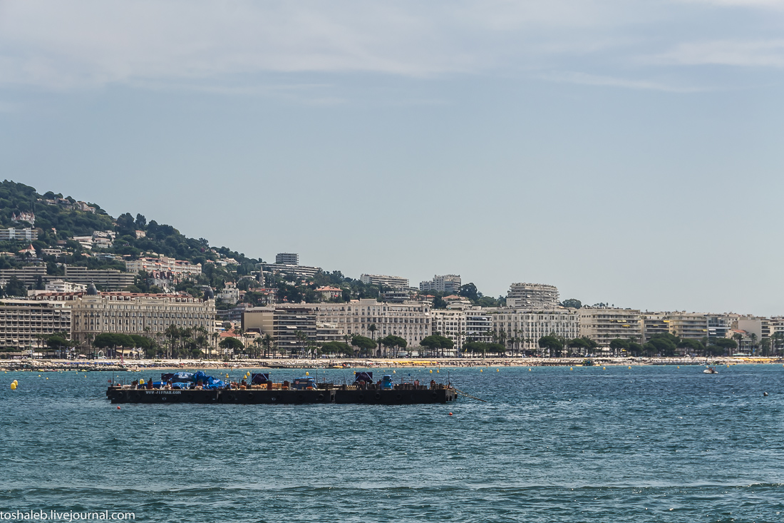 Cannes-55