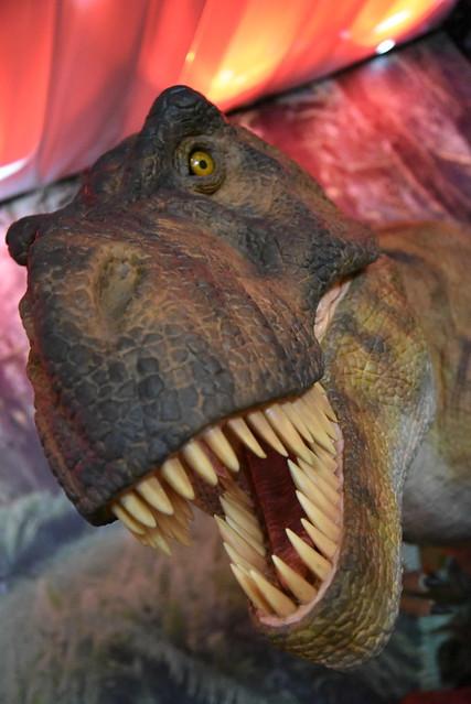 dinosaur D750 07
