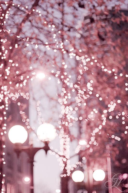 Navidad rosa 7