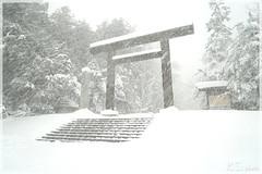 日本北海道.札幌_北海道神宮.01