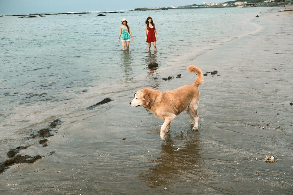 那淺水灣的踏浪探險隊