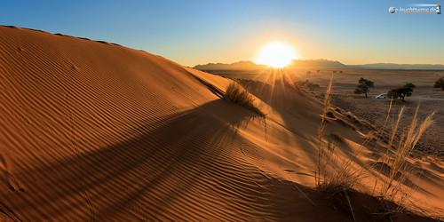 2x1 africa afrika dünen elimdune hardap namib namibnaukluftnationalpark namibia panorama sandwüste sonnenaufgang wallpaper wüste desert sanddesert sunrise hardapregion