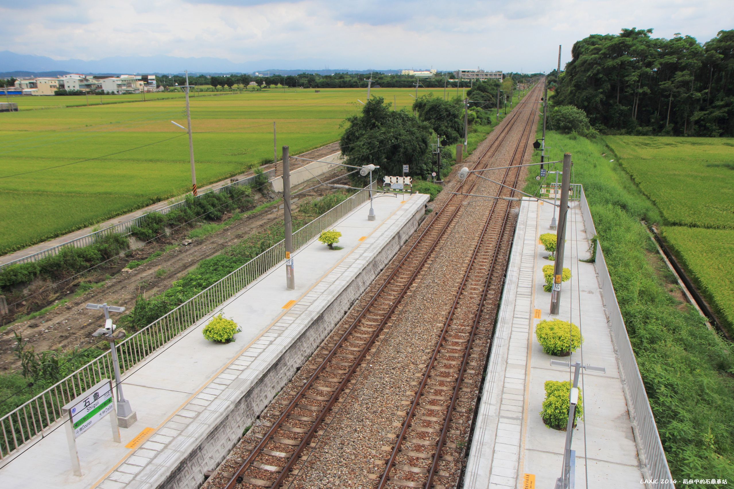 2014.06 稻田中的石龜車站