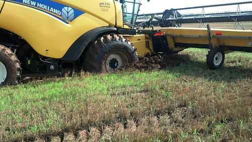 Other view of combine stuck