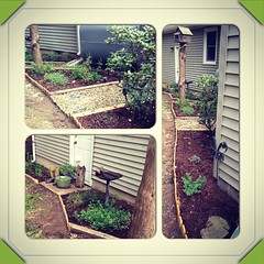 Ok @lovesgardening...my herb garden has taken off!! It runs along the back of my house  thanks for the inspiration