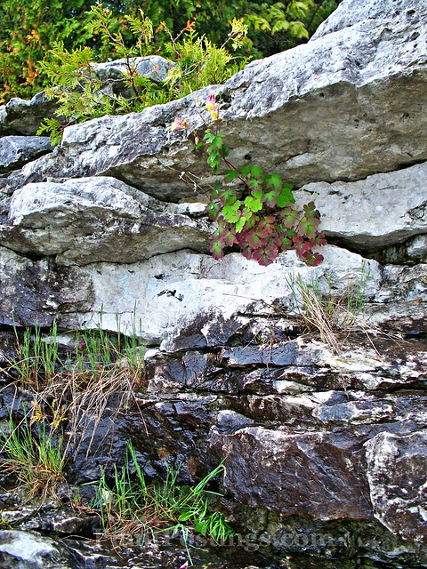 cavepoint3