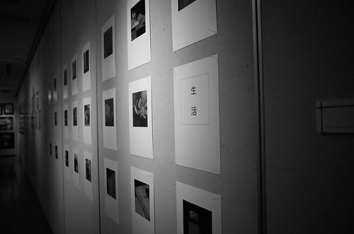 写真展「私たちのまなざしとその記憶 5」本日スタートしました!