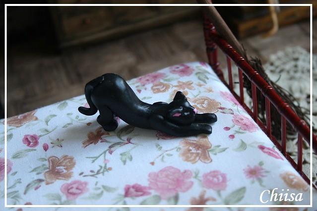Dollhouse et Diorama de Chiisa - Photos diorama Alice (p7) - Page 3 14771450576_43b5cb620a_z