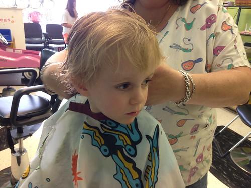 Martin Getting Hair Cut