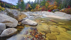 Wonderful Mountain Stream In Autumn