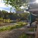 Beebe Lake rentals